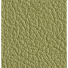 Natural leather - pistachio +£300.00